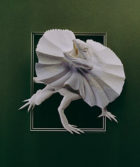 бумажные скульптуры Calvin Nicholls